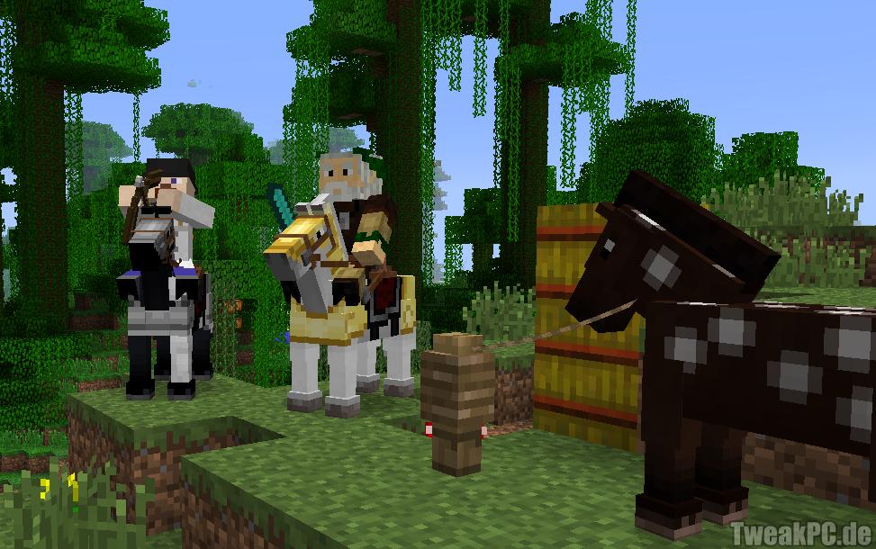 Minecraft Knapp Million Spieler Simultan Online - Minecraft spieler online